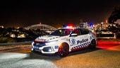 Honda Civic Type R e le altre supercar della Polizia