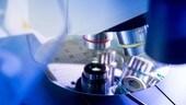 Bosch, super microchip per i motori elettrici