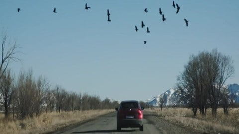 Mazda Epic Drive in Kazakistan IL VIDEO